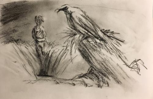Crow's Field